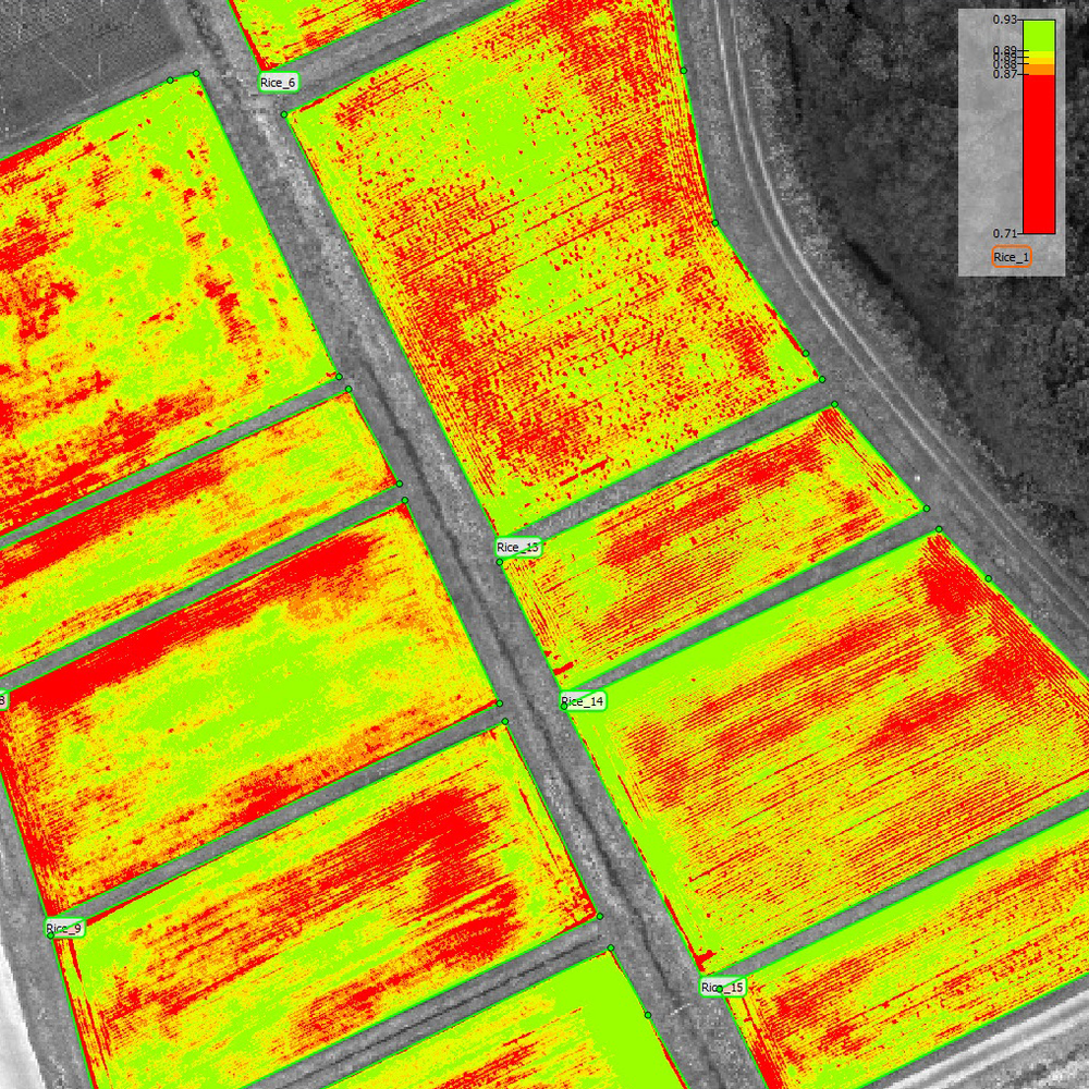 NDVI REPORTS - An NDVI sensor uses infrared and red light to measure chlorophyll levels of the vegetation. This allows us to measure plant health and other factors.