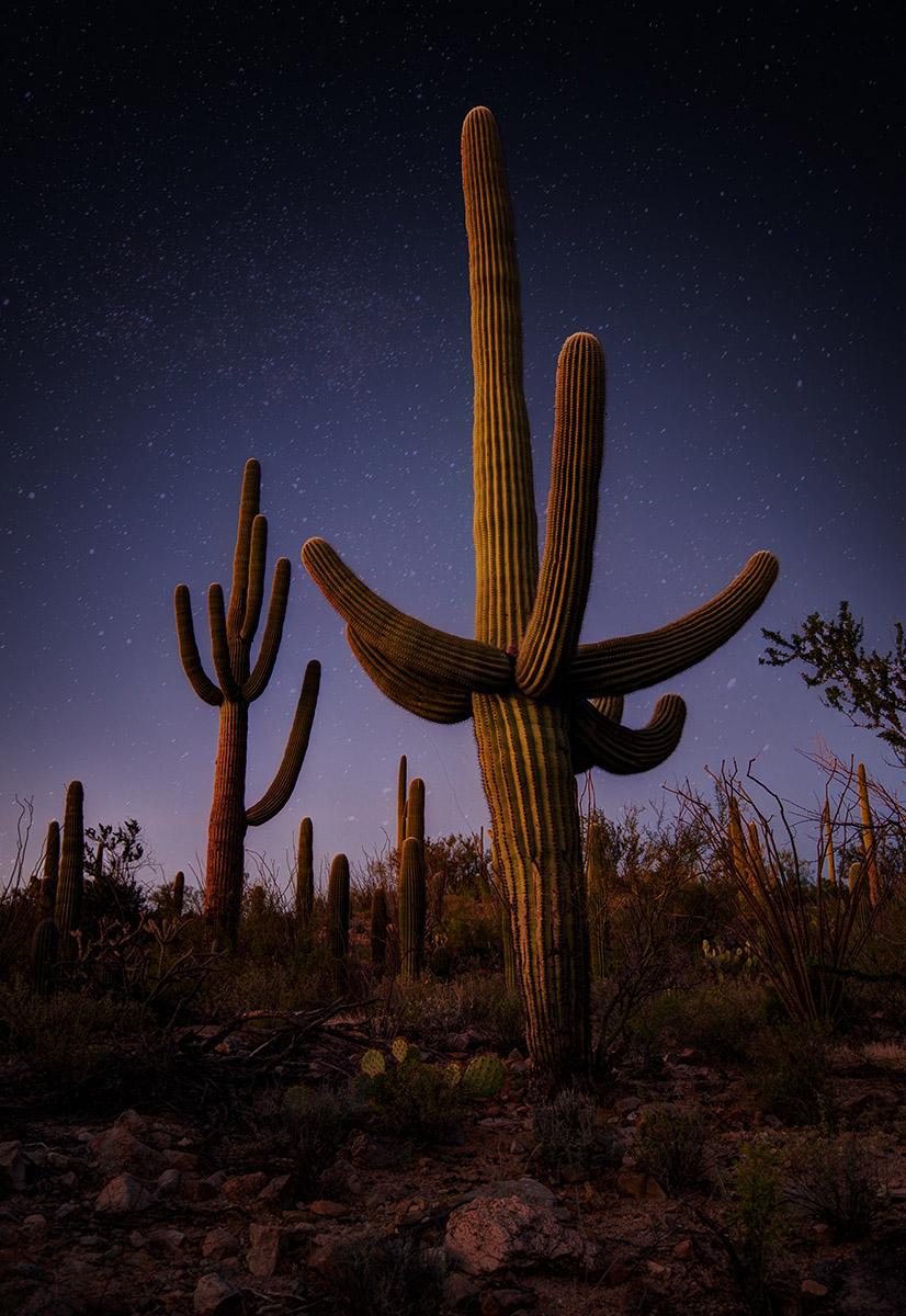 141010_TucsonAZ_PHP_1644WEB.jpg