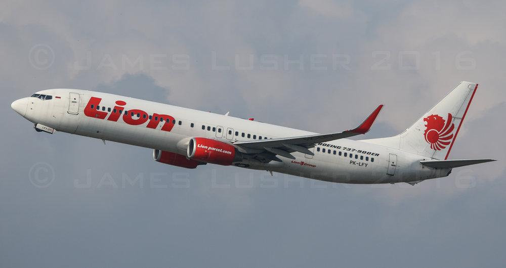 Lion 737-9 (1 of 1).jpg