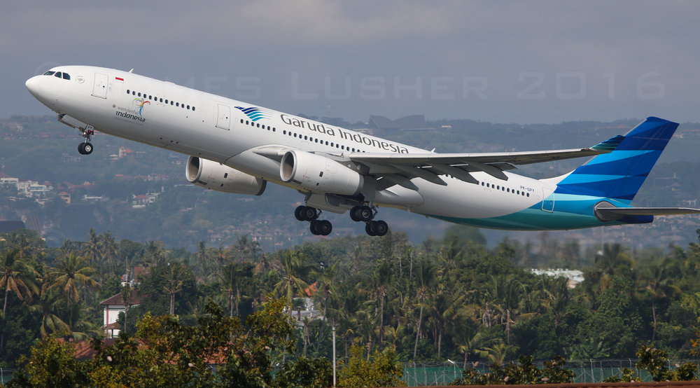 Garuda A333 (1 of 1).jpg