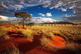 Namibia 1.jpeg