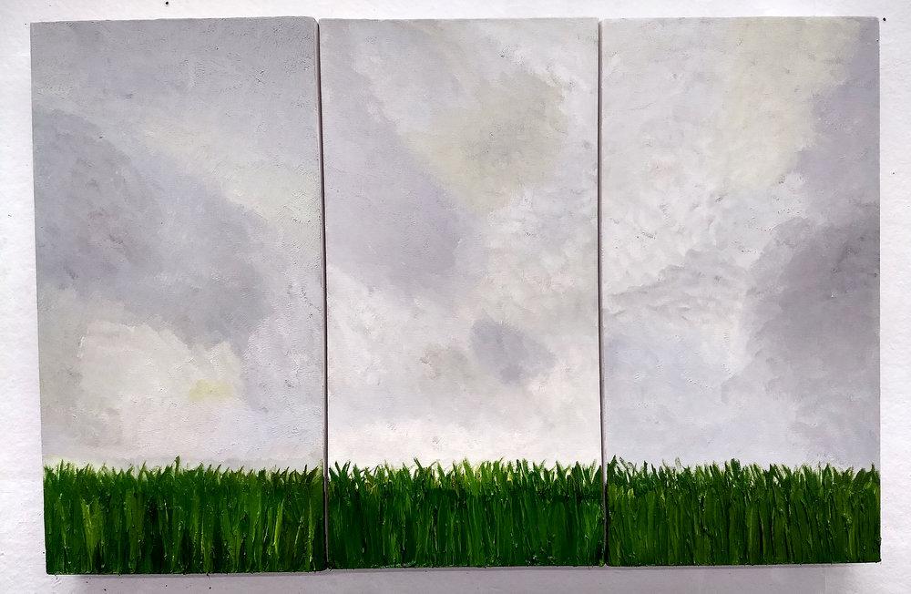The Field - Ariel Norris