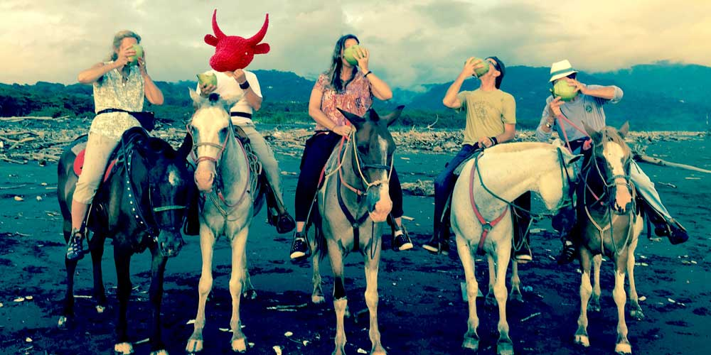 bandhorses.jpg