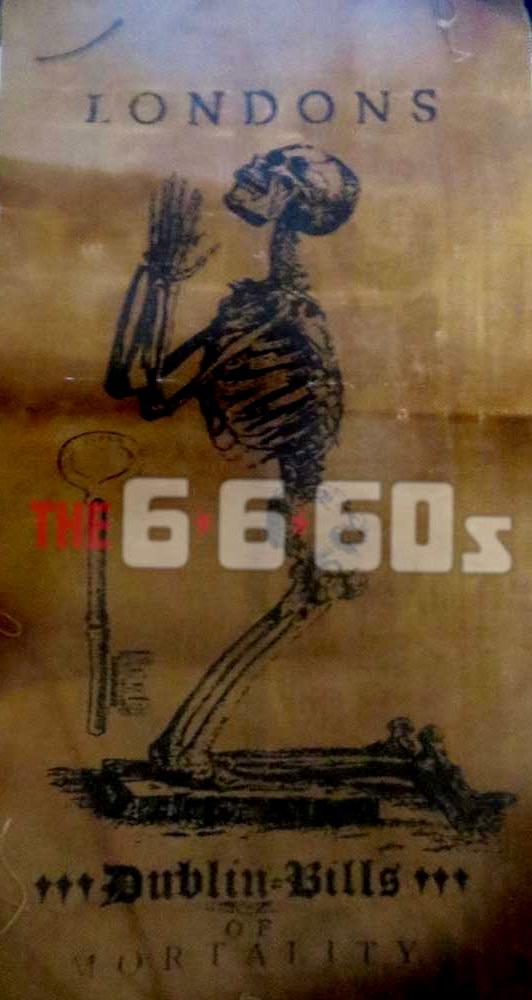 IMG_3971-6660s.jpg
