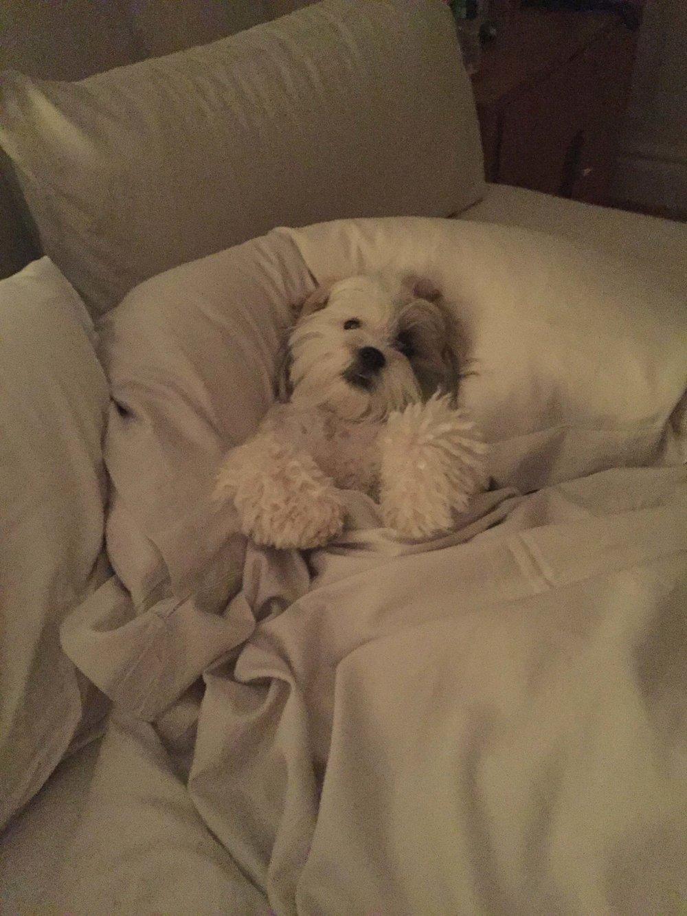 Bedtime. New York, NY