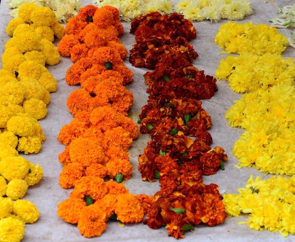 Flowers. Mumbai, India 2012