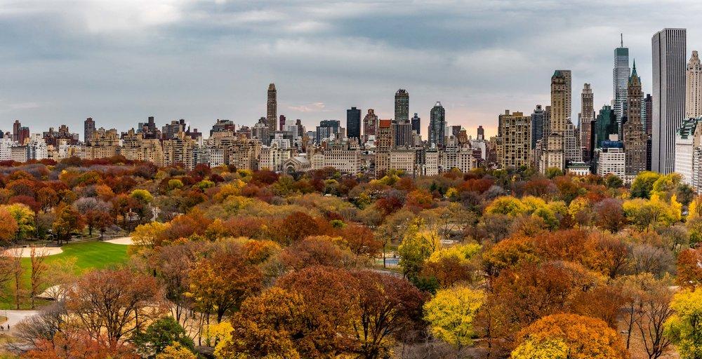 Fall Central Park. Manhattan, NY 2016