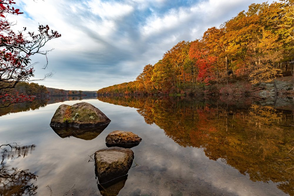 Autumn Leaves. Harriman Park, New York 2018