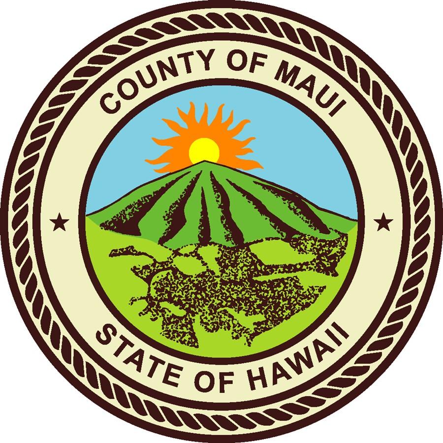 tdc-hawaii-honolulu-microsoft-sharepoint-database-consultants-oahu-maui.jpg