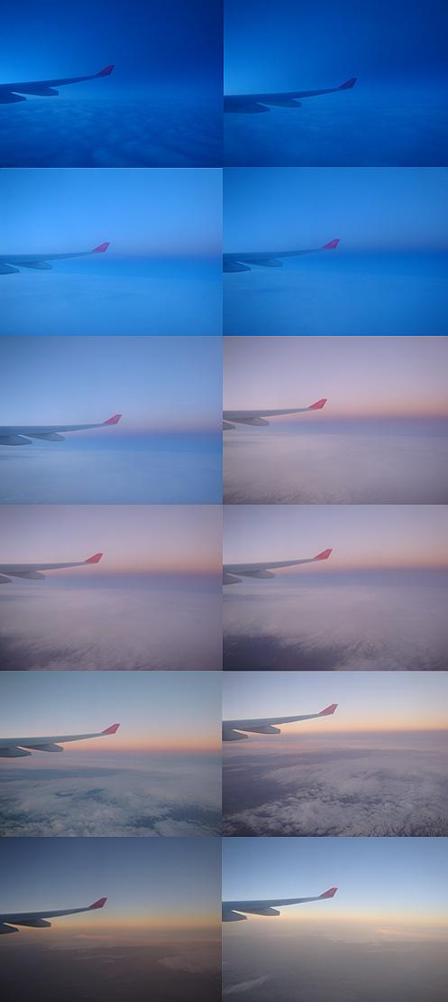 wing_tips.jpg