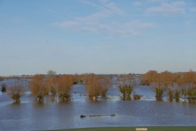 Floods-367-642x429