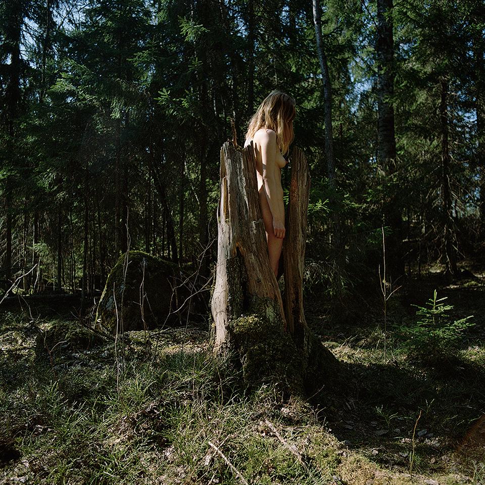 puunjakuorenvälissä_2016_50x50cm.jpg