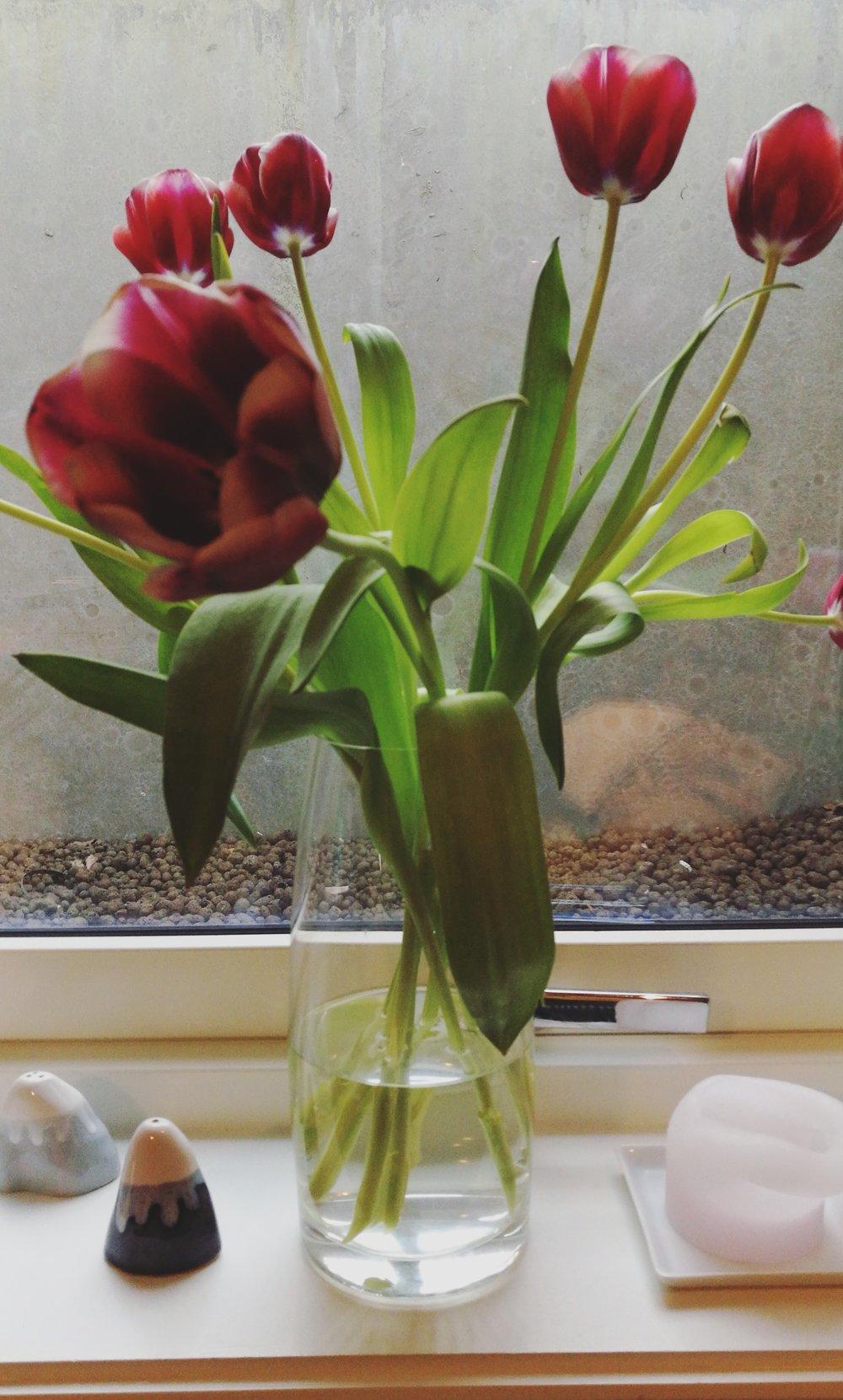 Blomster for å pynte på utsikten!
