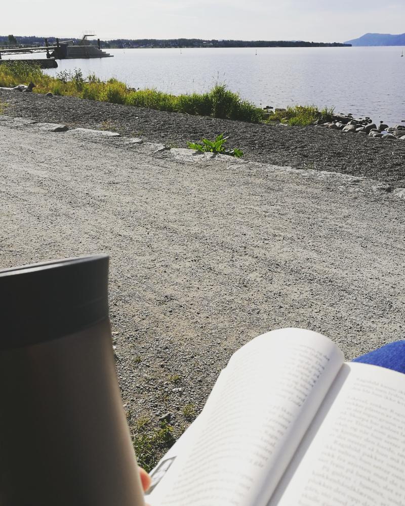Kaffekopp ved Mjøsa