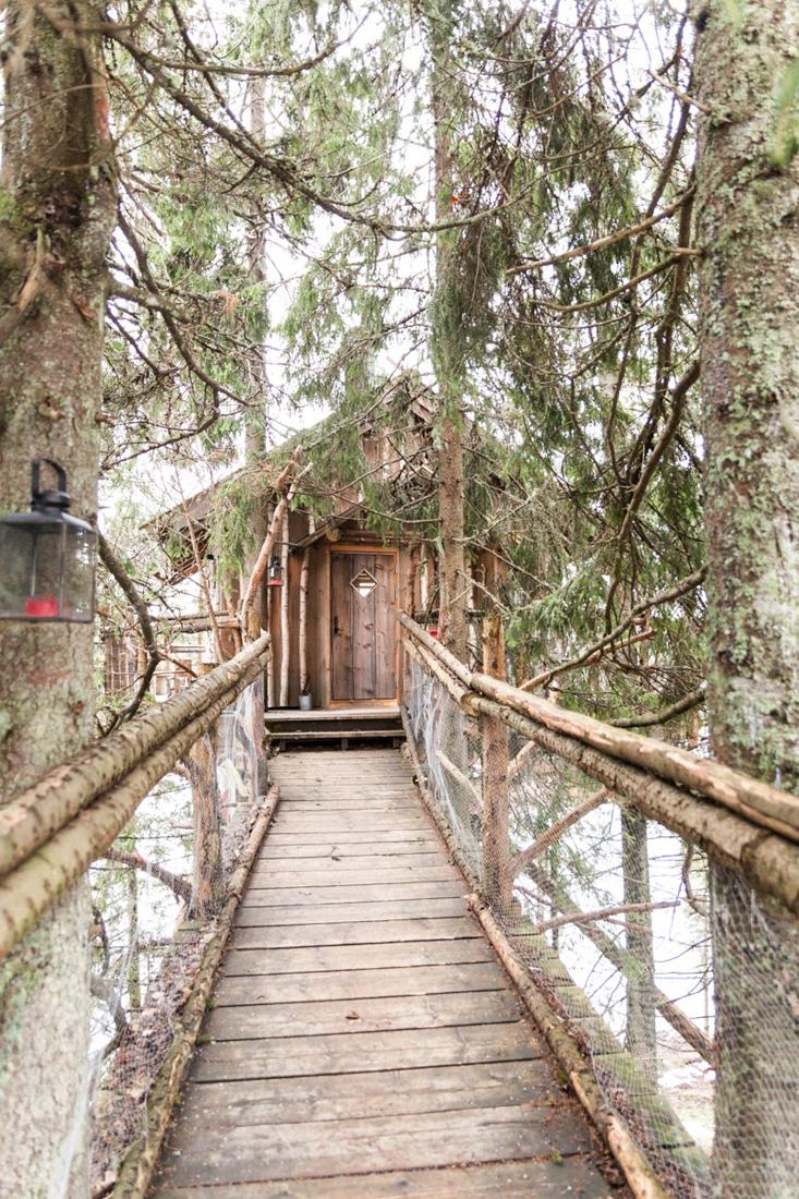 En hytte i toppen av et tre!