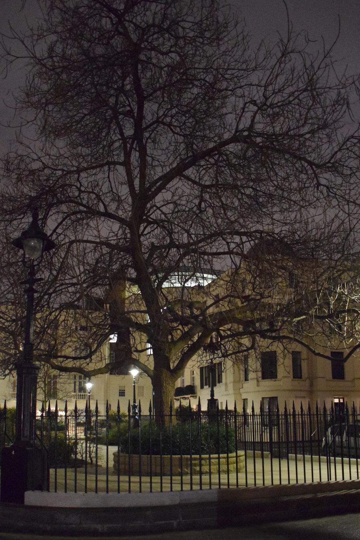 Victoria Square - Public