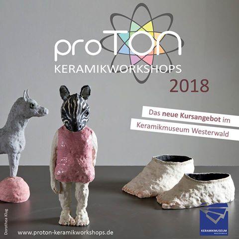 proTon Flyer für Homepage.jpg