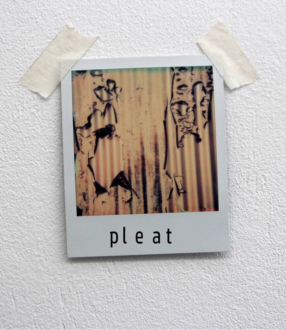 pleat.jpg
