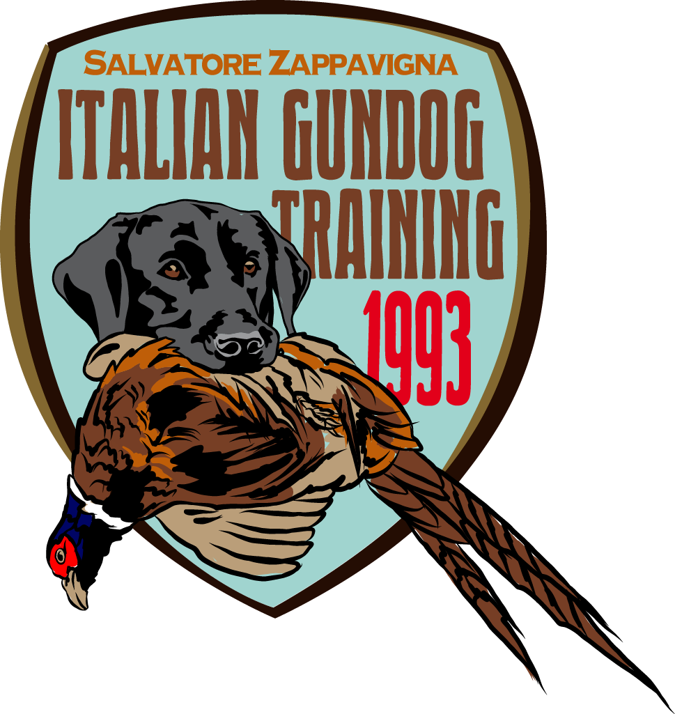 Italian Gundog Training