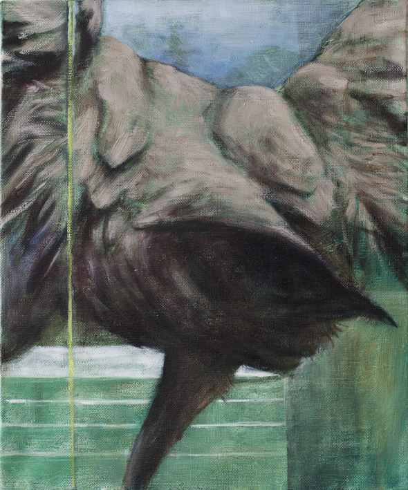 Display (Grus Grus)  Oil on canvas 65 x 54 cm 2012