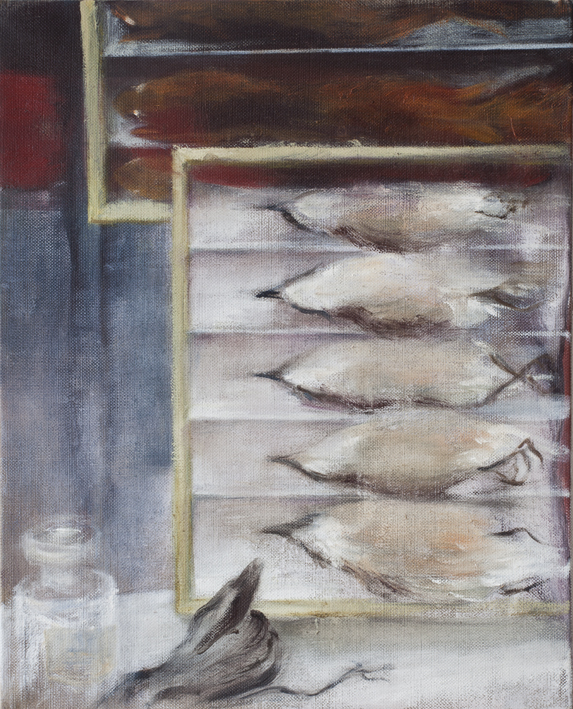 Display (Taxidermy) V  Oil on canvas 41 x 33 cm 2013