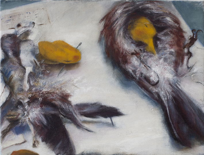 Display (Taxidermy) IV  Oil on canvas 27 x 35 cm 2013