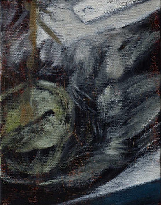 Display (Taxidermy) VI   Oil on canvas 35x27 cm 2013