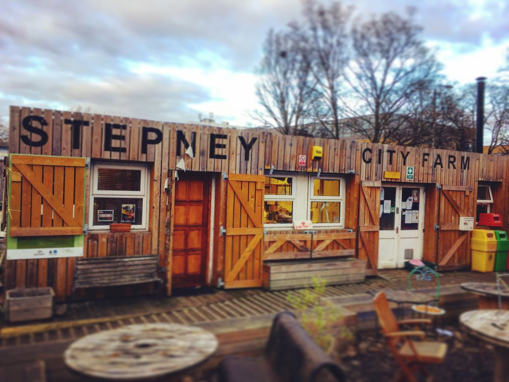 "Stepney City Farm - The venue for our new series ""This is English!"""