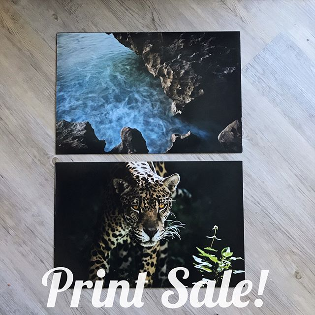 Hey guys! Over the years I've amassed a ton of prints so I'm looking to get rid of some from the stack. Swipe through to see if there are any that catch your fancy. A few bucks each or whatever, I'm down to ship as well if you're not local. Let me know!