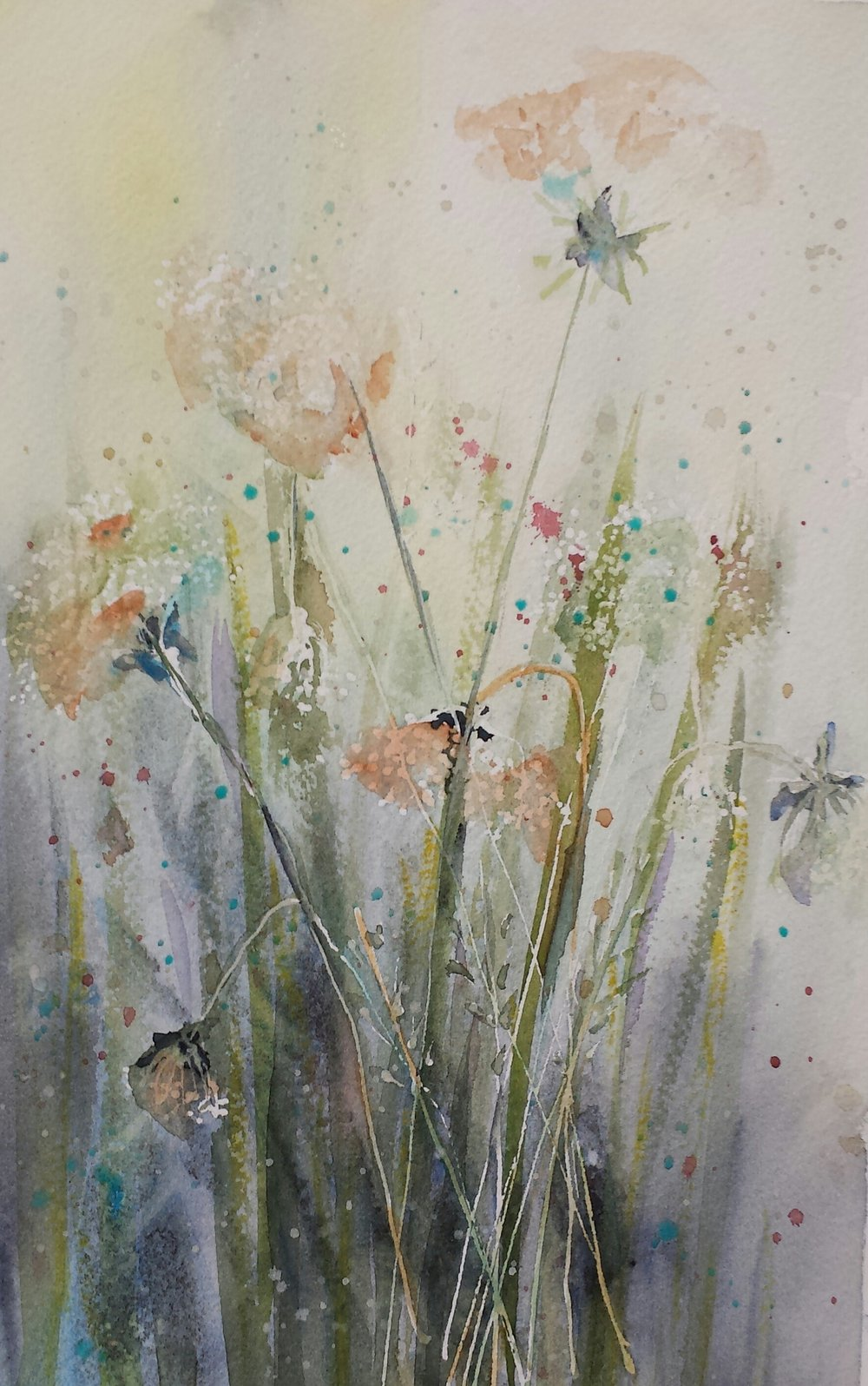 Queen Anne's Lace, 2016, watercolor.