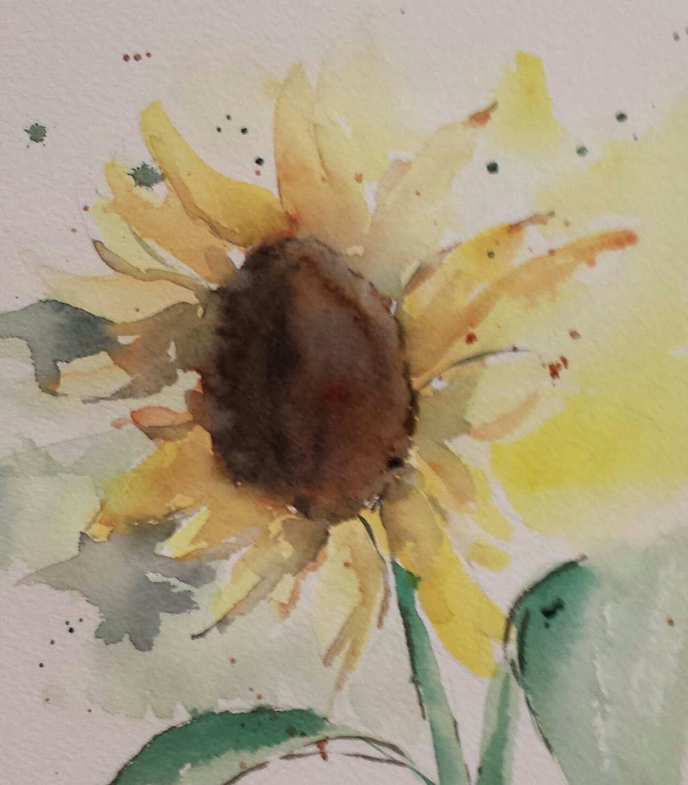 Sunflower, 2016, watercolor.