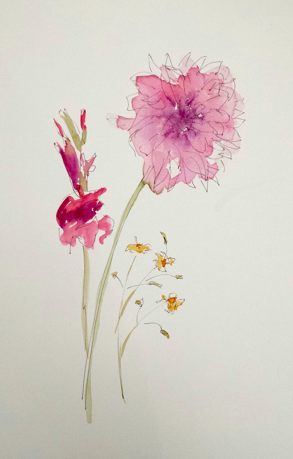 Pink Flowers, 2016, pen, ink, and watercolor, 10 in x 6 in.