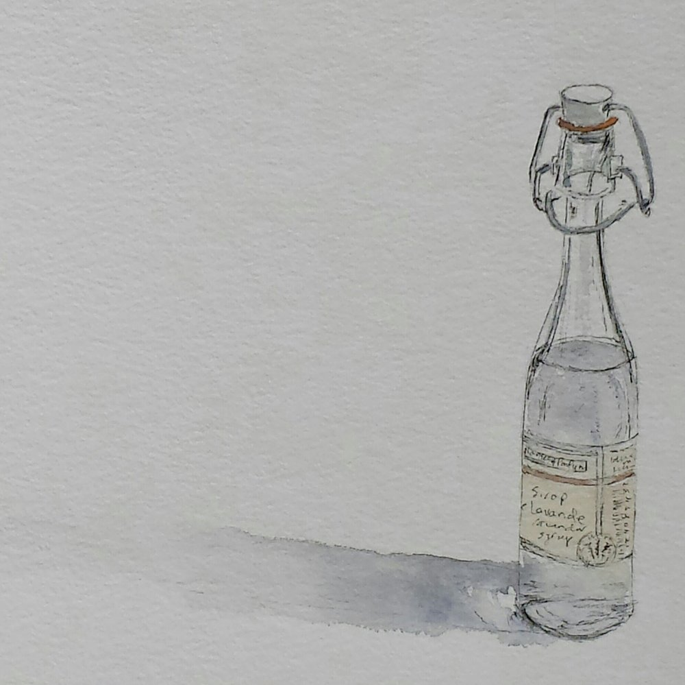 Sirop de lavande, 2016, pen and wash.