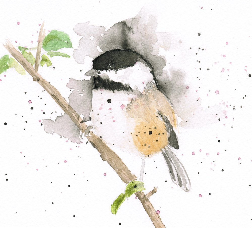 Chickadee, watercolor, 2016