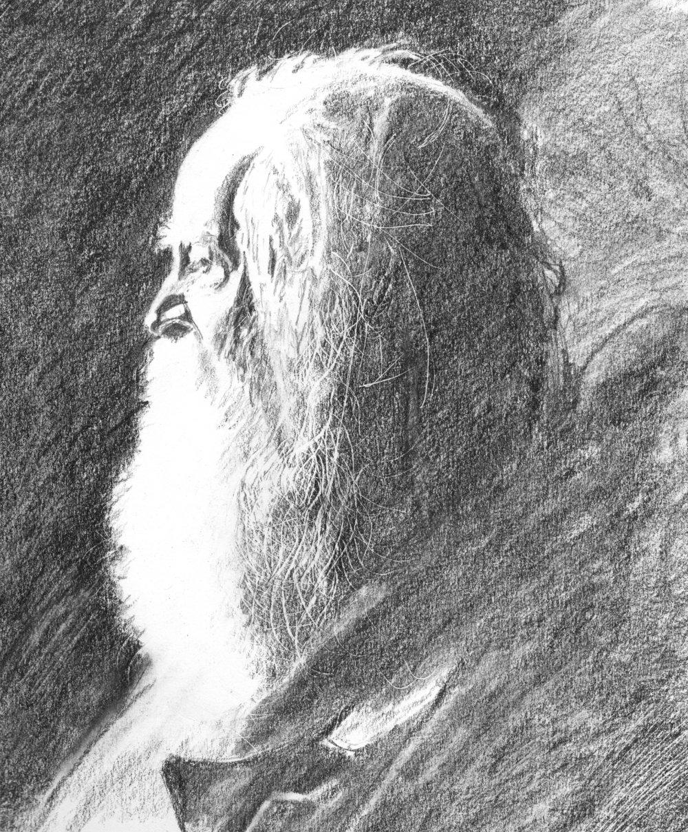 Walt Whitman, graphite on paper, 2016