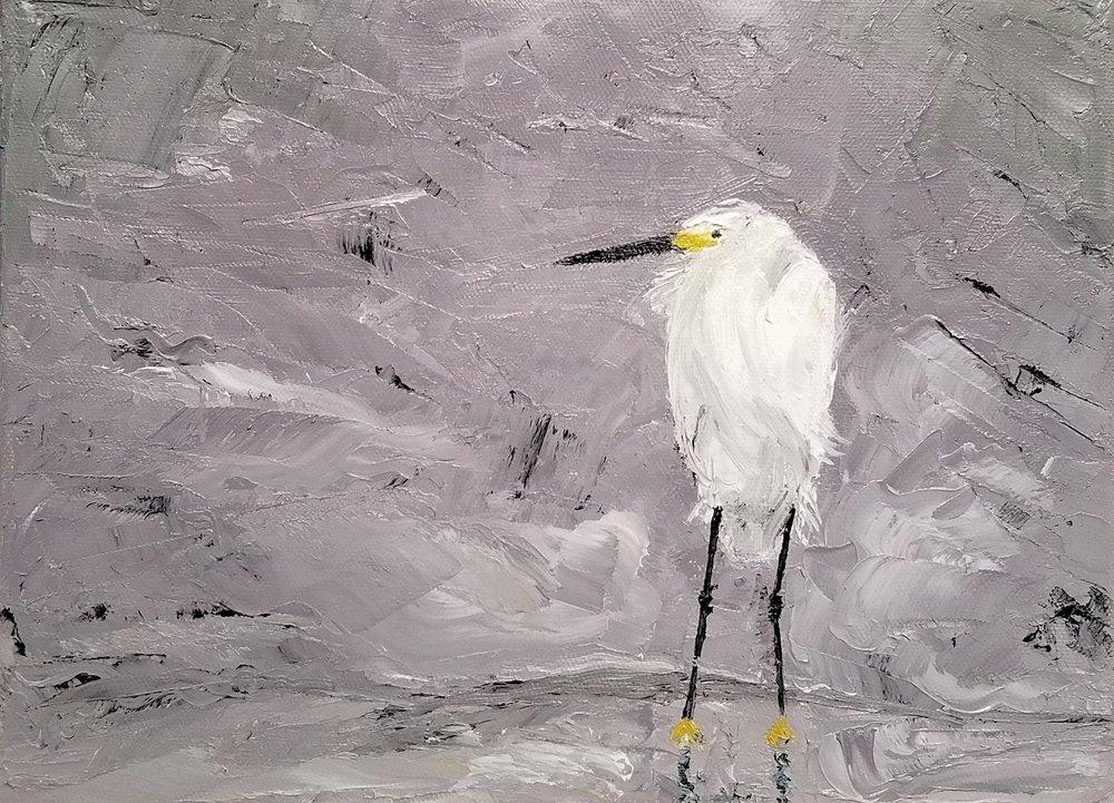 Snowy Egret; oil; 2018