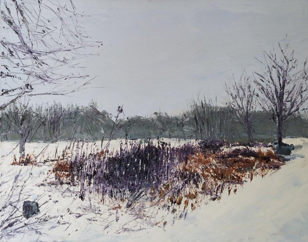 Winter Garden; oil; 16x20; 2018