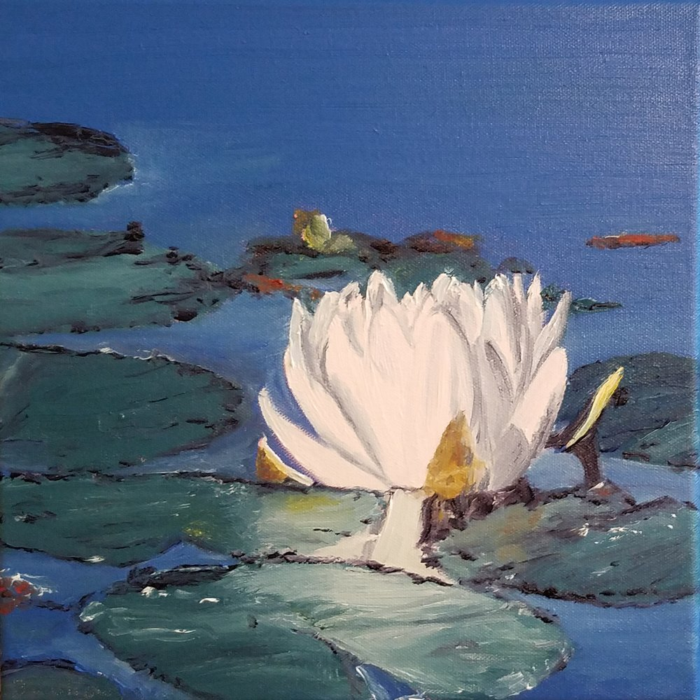 Waterlily; oil on canvas; 2018