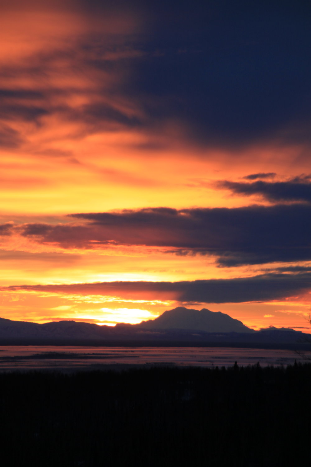 A lovely sunset showcasing Denali.  😍❤️