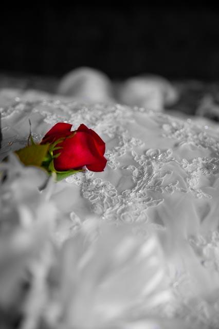timkennedyphoto-weddings-12.jpg