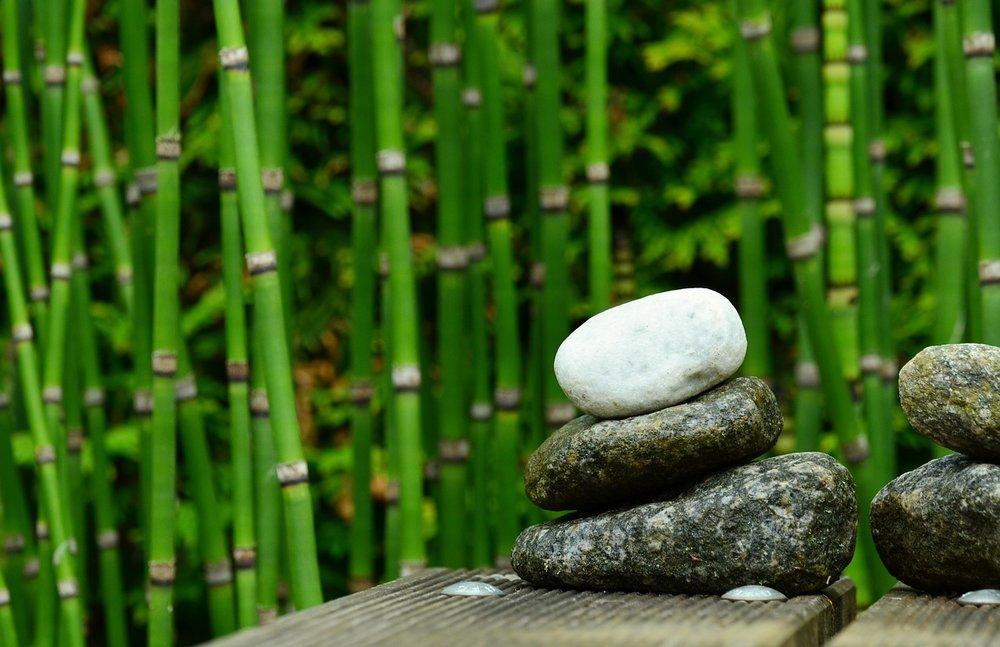 Zénitude   Pour vous recentrer | pour remonter votre énergie!     En savoir plus