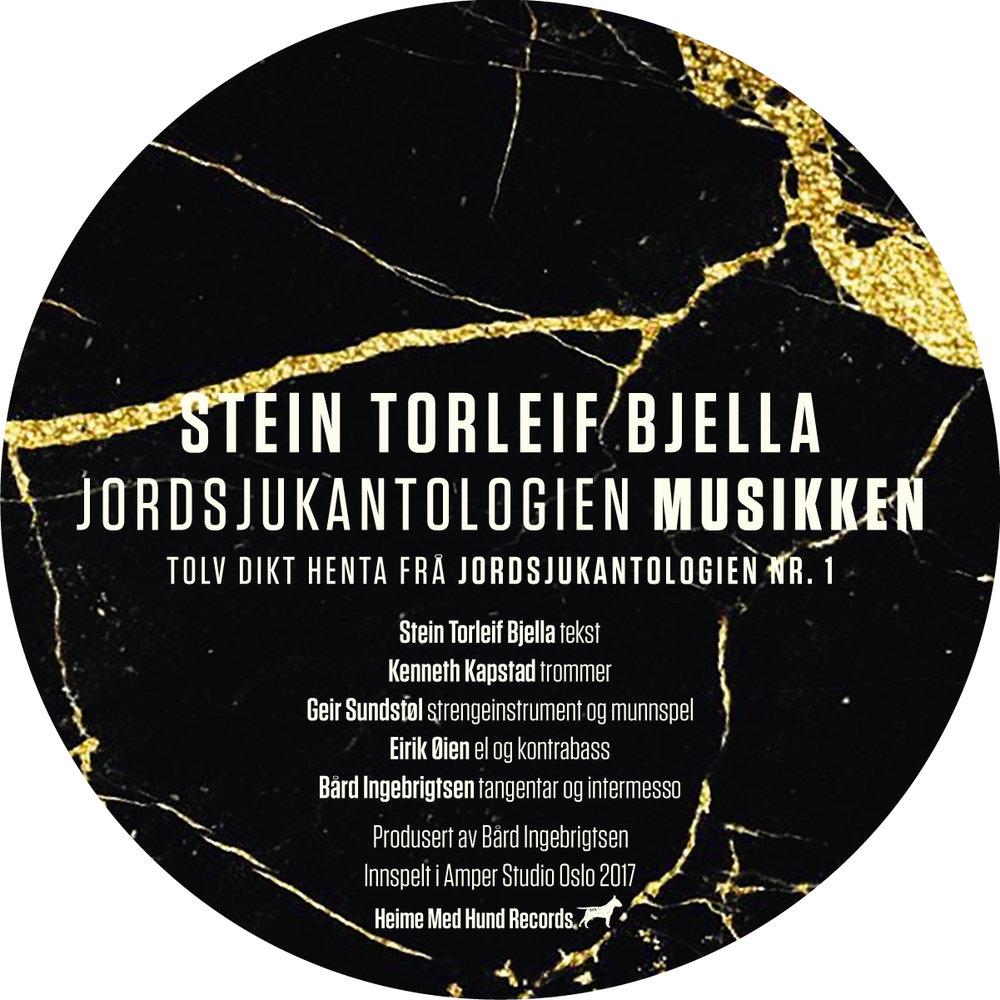 - Jordsjukantologien, 2018