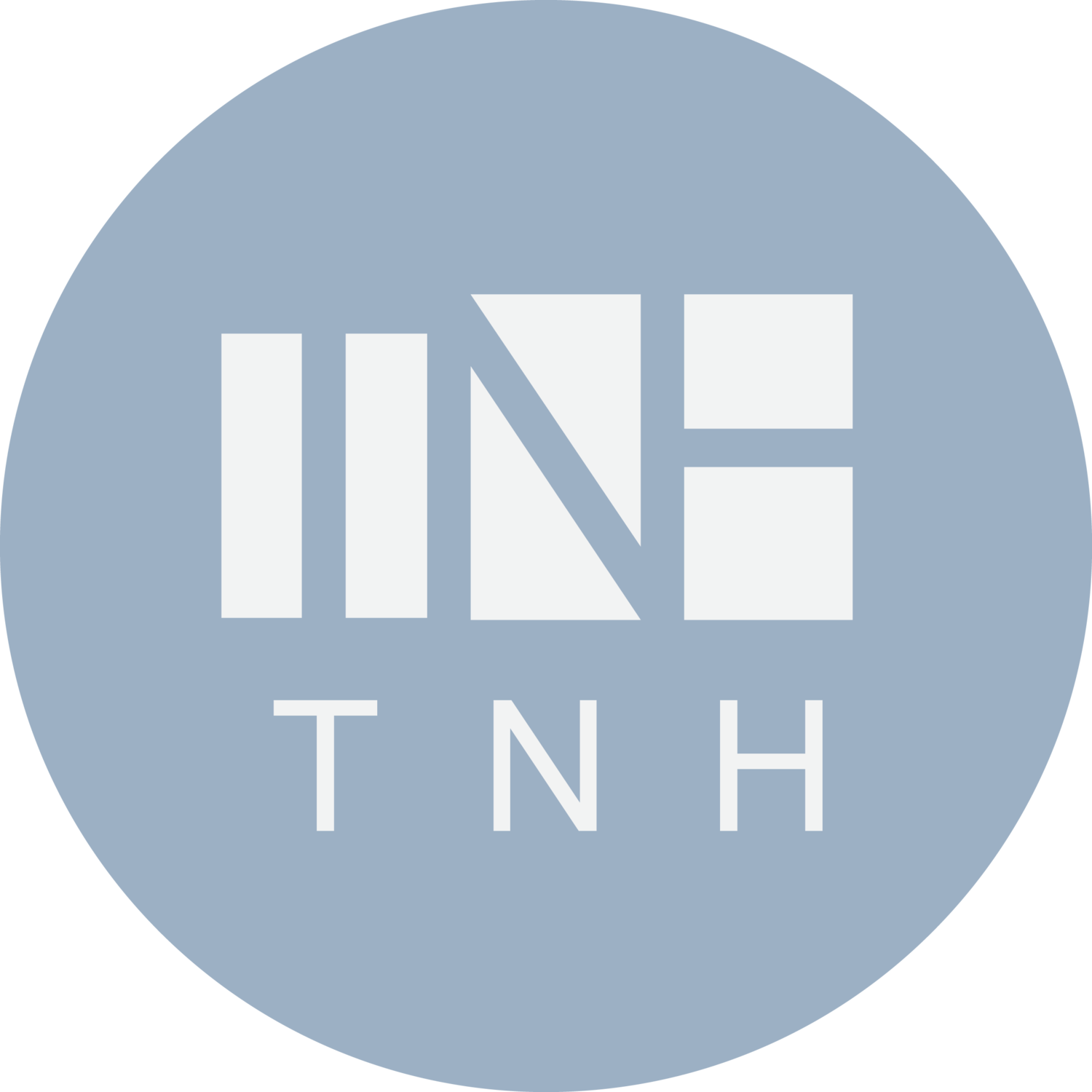 TNH Student Advertising Agency