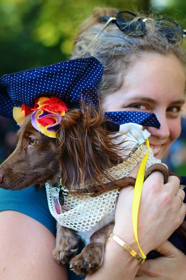 2015 Dog Halloween Parade