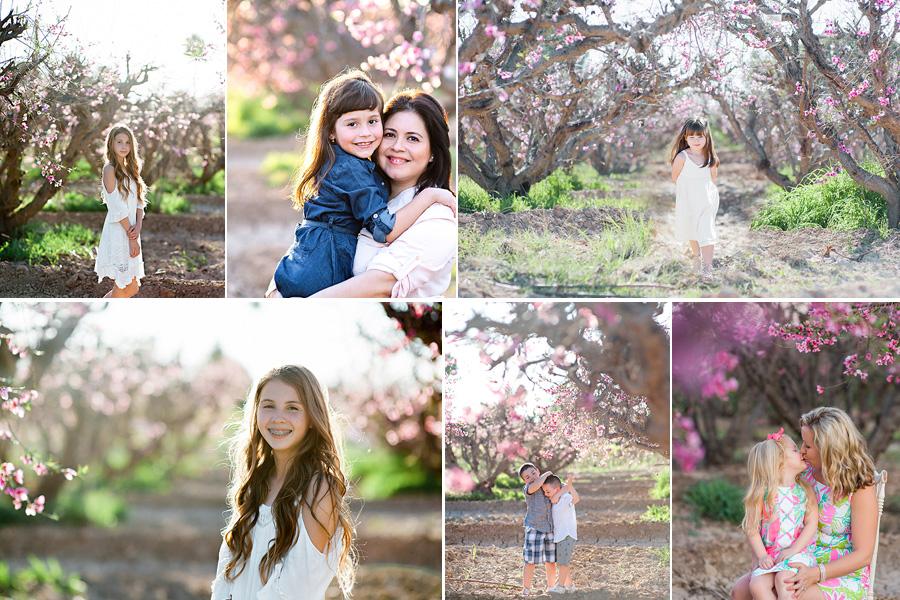 peach blossom flyer_2.jpg