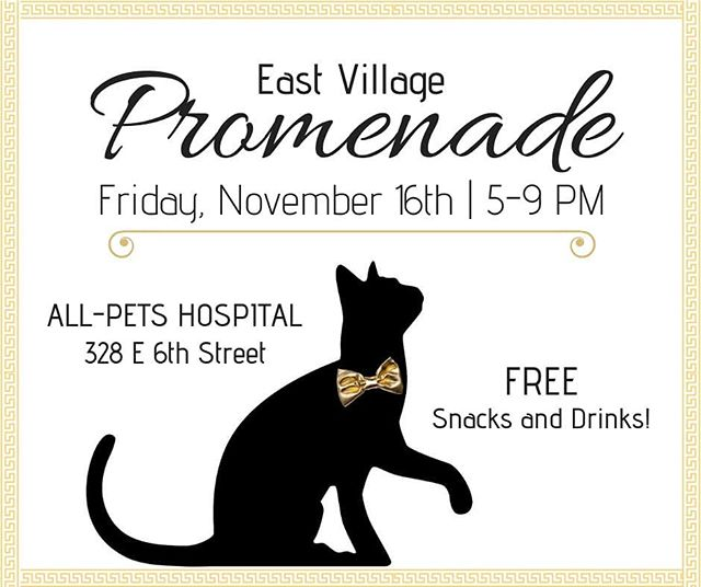 We hope to see you all at East Village Promenade this Friday! Our whole staff will be there to hand out free snacks and drinks. We MIGHT even have some kittens for you to play with. 😸