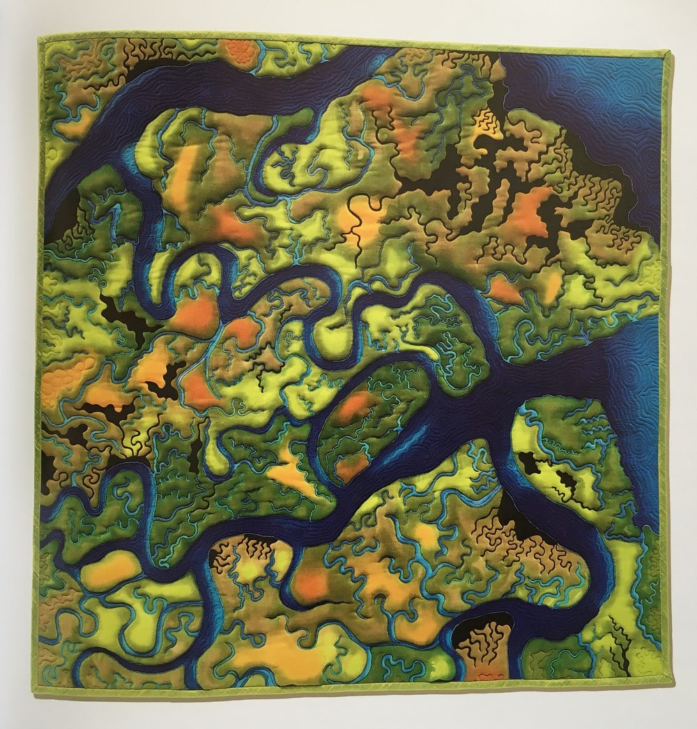 "Wetlands Dream  by Linda Gass. 2006. Art quilt; 29 x 29.25 inches. ""Gass's quilted artworks draw attention to the challenges of water resource management in the American West."" P 82-83."