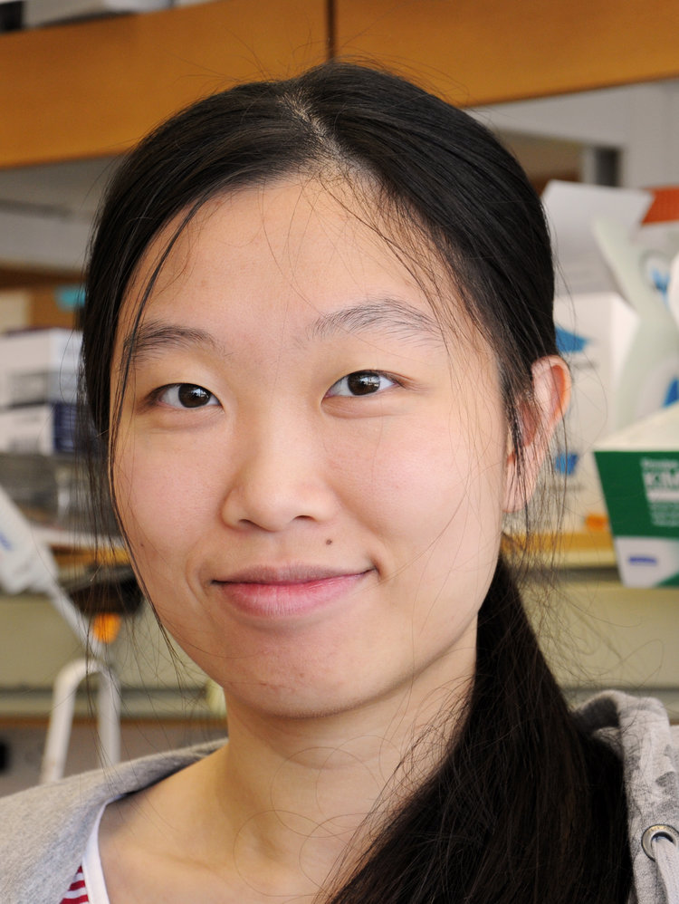 Amy Zhang    PhD Candidate BSc (Hons), University of Toronto Fermata.zhang@mail.utoronto.ca