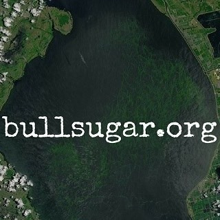 bull sugar.jpg
