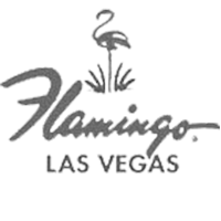dm_client_logos_website_200b_0015_Flamingos(1).png